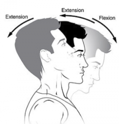 whiplash extension and flexion positions